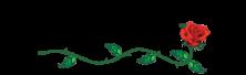 Villa Rosa | Luxury Sarasota Living Logo